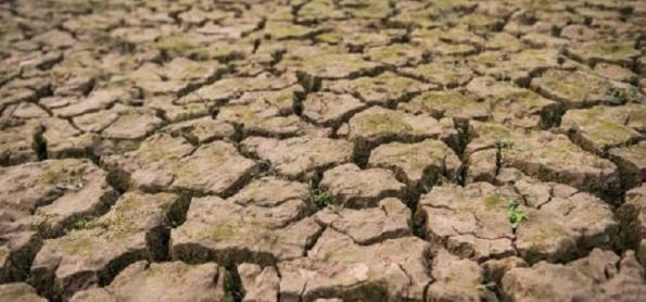 Panorama da seca no Brasil