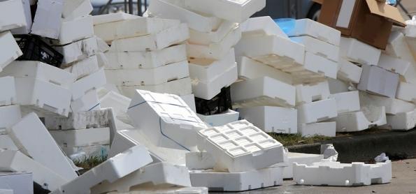 Plástico: reciclável na teoria, poluição na prática