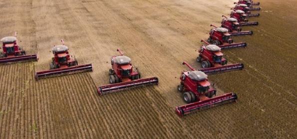 Soja, milho e carne puxam valor da produção agropecuária