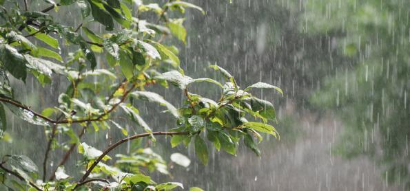 Vitória tem chuva histórica para Outubro