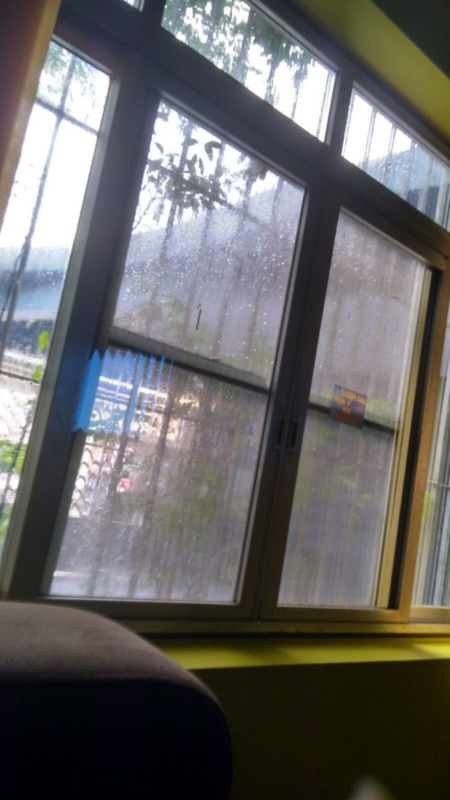 Chove no Parque Edu chaves