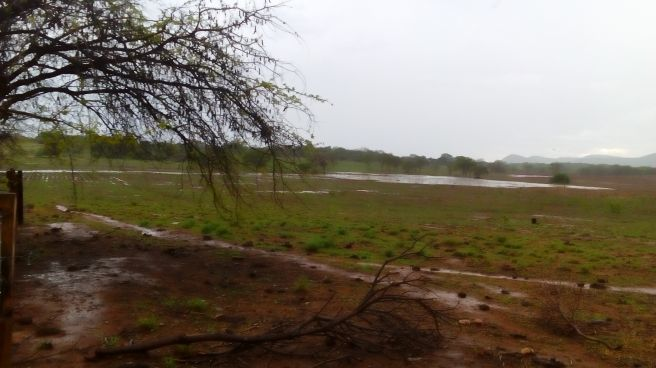 Muita chuva no norte de Minas!