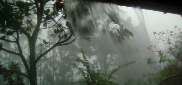 Forte chuva e vento em Santa Catarina