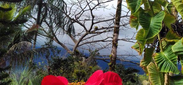 Nevoeiro na Serra