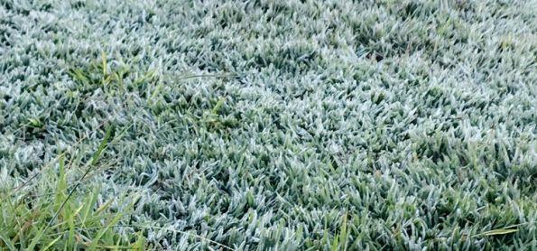 Frio SURREAL em Morrinhos-GO