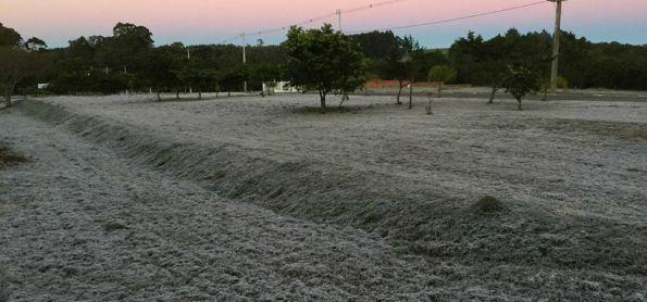 O domingo começou  congelante no Rio Grande do Sul !!!