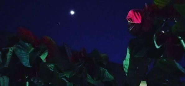 Linda noite de Luar...
