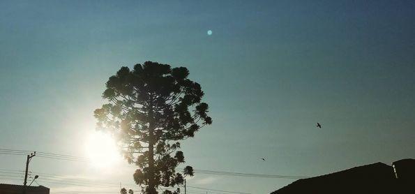O dia encerrou com sol e a temperatura amena..