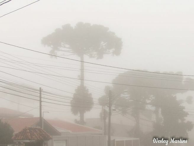 Nevoeiro em Curitiba PR