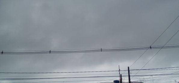 Tempo nublado em curitiba nesse Domingo