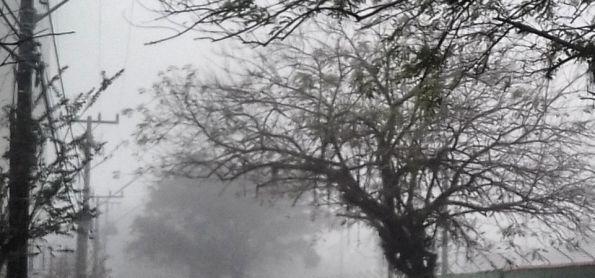 Nevoeiro em joinville