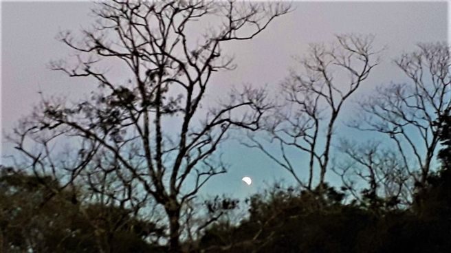 Eclipse lunar em 16-07-2019