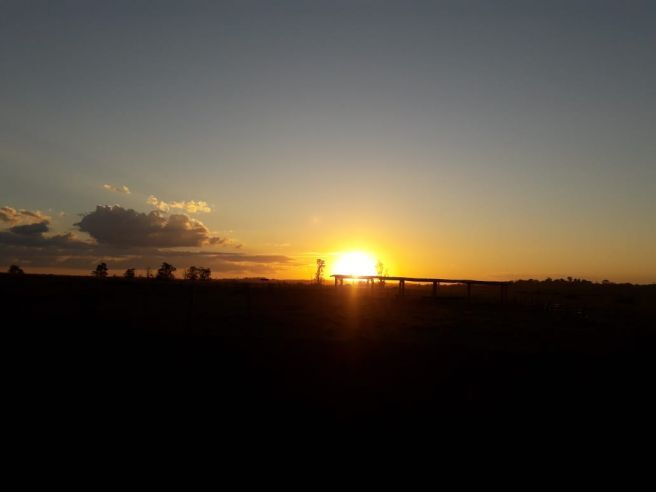 A tarde de ontem em Castanheira-MT