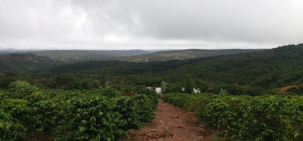 TEMPO CHUVOSO EM SINCORA DA SERRA  - BAHIA