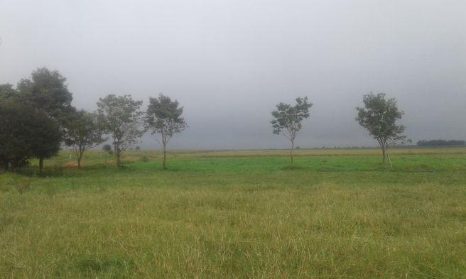 Chuva chegando de mansinho