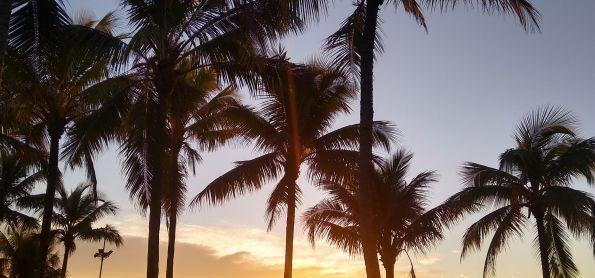 Nascer do sol hoje em Paranaguá
