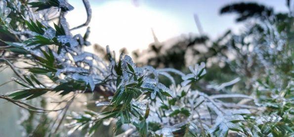 Região Serrana do Rio de Janeiro fez mais frio que o Alaska com 5 graus negativos