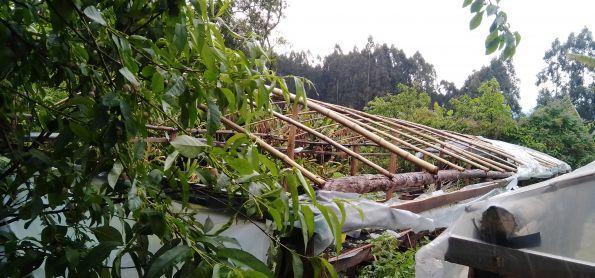 Vendaval destrói estufa agrícola em Itaiópolis-SC 28-09-2020.